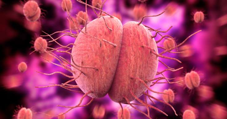 Chlamydia and Gonorrhea